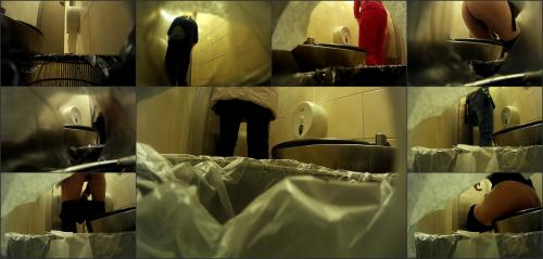 female toilet in a shopping centre-1
