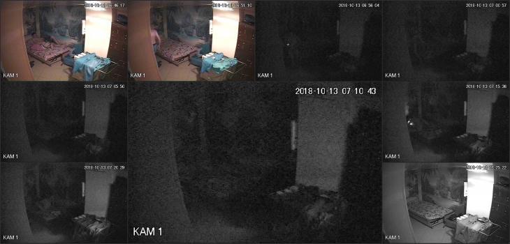 Hackingcameras_3299