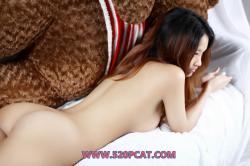 cat012.jpg