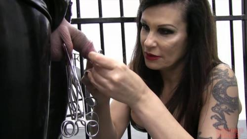 Miss Velour – Caged Dolls (R602). Oct 27 2016. Seriousimages.com (436 Mb)