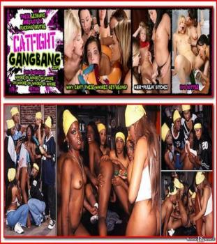 CatFightGangBang (SiteRip) Image Cover