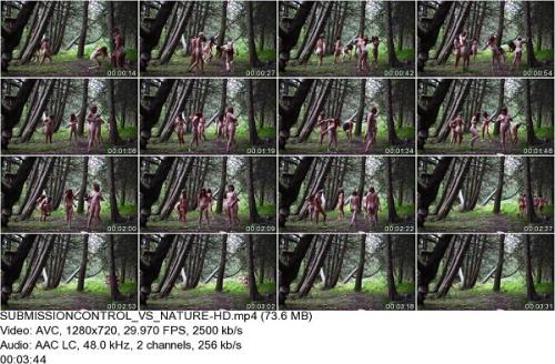 Group of naked girls in the forest