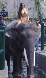 kim-kardashian-on-vacation-in-bali-102718-8.jpg