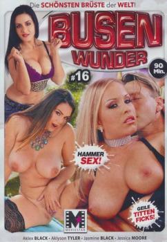 Busen Wunder 16 (2018/DVDRip)
