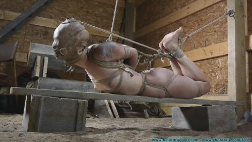 Illustrious Rouge is Welcomed Back with a Tight Crotchrope and a Hooded Hogtie. Futilestruggles.com (1917 Mb)