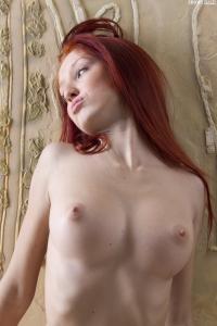 showybeauty-2012-01-19-Red-Fox-Posing-v6s28vxmyo.jpg