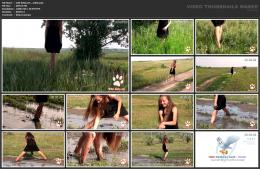 88961901_wild-kitty-net__v002-mp4.jpg