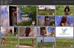 88961911_wild-kitty-net__v008-mp4.jpg