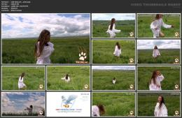 88961921_wild-kitty-net__v013-mp4.jpg