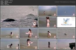 88961931_wild-kitty-net__v021-mp4.jpg