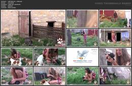 88961952_wild-kitty-net__v040-mp4.jpg
