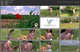 88961968_wild-kitty-net__v049-mp4.jpg