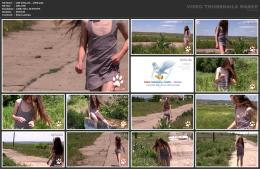 88961969_wild-kitty-net__v050-mp4.jpg
