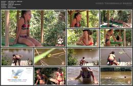 88962014_wild-kitty-net__v064-mp4.jpg