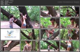 88962021_wild-kitty-net__v066-mp4.jpg
