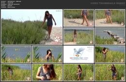 88962060_wild-kitty-net__v080-mp4.jpg