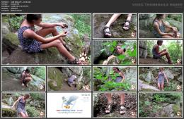 88962135_wild-kitty-net__v110-mp4.jpg