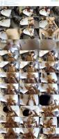 89050377_fuckingglasses_tfg081_her_pussy_is_a_magic_place-mp4.jpg